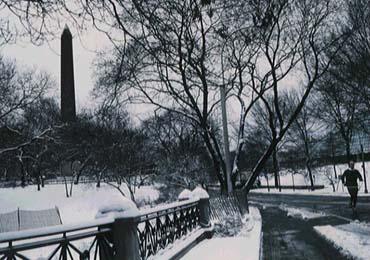 obeliscony.jpg